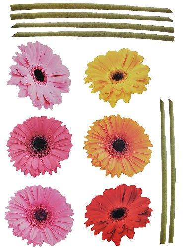 alles-meine.de GmbH XXL Wandtattoo / Sticker - Gerbera mit Stengel - Aster Blüten Blumen - selbstklebend für Wohnzimmer und Deko Wandsticker Aufkleber