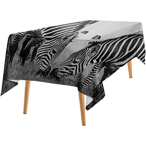 LanQiao Animal Pink Rectangular Tablecloth Zebras African Wildlife Burchell Safari Theme National Park Monochrome Picture Cotton Tablecloth 60'x90' Black White.jpg