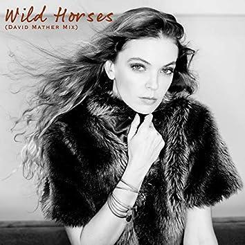 Wild Horses (David Mather Mix)