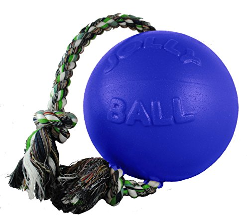 Jolly Pets Romp-n-Roll Rope and Ball Dog Toy, 6 Inches/Medium, Blue