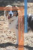 Cómo Lidiar Con Un Perro Pastor Australiano Hiperactivo: Qué Hacer Si Tu...