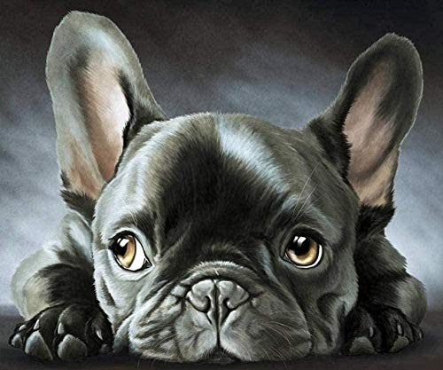 Adult Counted Cross Stitch Kits Black French Bulldog 40X50CM 14CT Holiday Gift DIY Embroidery Starter Kits Easy Patterns Embroidery for Girls Crafts Cross-Stitch Supplies NeedleworkThe
