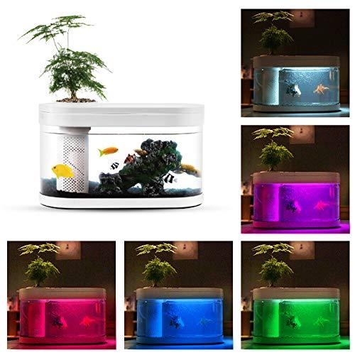 Kleine aquarium transport visbak met filter, LED-verlichting, stenen tuin, bloempot en USB-kabel, DC5V (Mini Aquarium)