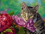 N-L Pintura por números para Adultos DIY Pintura Pintada a Mano Decoración de Pared para el hogar Decoraciones para el hogar Regalos para niños Adultos-Flor Mascota Gato