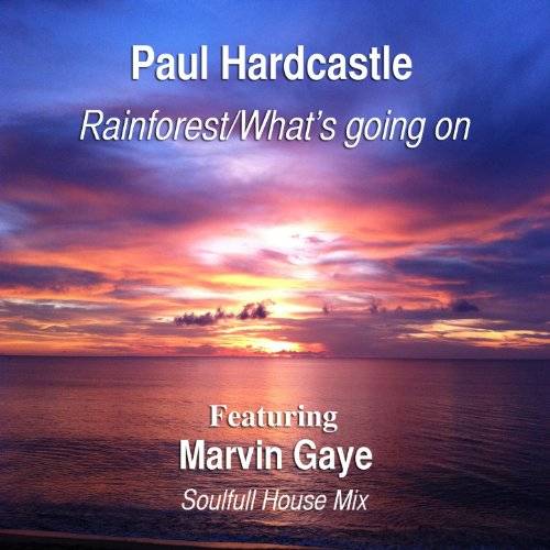 Rainforest/What's Going On (feat. Marvin Gaye) (Soulful House Mix)