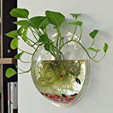 Cloud-Castle Wand montiert Fisch Acryl Tank Schüssel Bubble Goldfish Home Decoration Pot Aquarium Hanging Terrarium