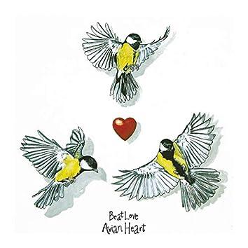 Avian Heart