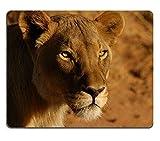 Yanteng 17P00142 Creatividad Alfombrilla de ratón para Juegos Lions Namibia África