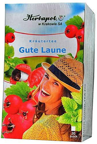 Stärkungs Kräuter Tee: Guarana, Ginseng, Ingwer, Weißdorn, 4 weitere Kräuter, 20 x 2g, 40g, erwärmt, gleicht Stress aus, verleiht Kraft, beugt Grippe, Erkältung vor, entsäuert