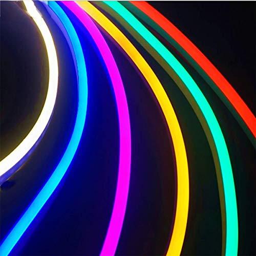 Luz de tira flexible 5M LED AC 220V Neon LED Tubo Impermeable Cuerda Lámpara de cuerda, Decoración del Festival de vacaciones de bricolaje (16.4 ft)