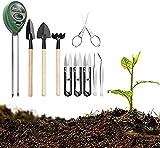 Contador de suelo 3 en 1, cantidad fotométrica de humedad del suelo de la horticultura y medidor de pH con herramientas de bonsái, juego de herramientas de trasplante de bonsái para granjas de jardín