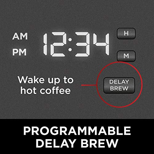 Programmable Delay Brew