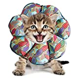 PJDDP Regolabile Collare del Gatto di Recupero Cat Cono Dopo Chirurgia, Elisabettiano Collari Protettivi Cono, Bordo Sfumato Anti-Bite Lick Capo La Guarigione della Ferita per Animali Gatto Cani,2,SM