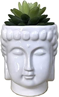 Best buddha plant holder Reviews