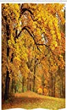 ABAKUHAUS Landschaft Schmaler Duschvorhang, Herbst Pale Maple Trees, Badezimmer Deko Set aus Stoff mit Haken, 120 x 180 cm, Orange Braun