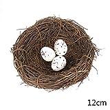 Yardwe 10 Piezas de Cuenco de cr/ía de Huevo de Ave pl/ástico Nido de Paloma taz/ón Estera Mascota Suministros de Aves para el hogar Granja Tienda