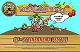 NaturesGoodGuys Beneficial Nematodes SF Steinernema feltiae - 50 million