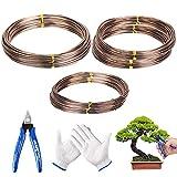 mezoom 6 rotoli fili per bonsai fili di alluminio modellabile filo alluminio cavo bonsai filo addestramento linea da giardino contenere rami di bonsai piccoli tronchi (1mm/ 2mm/3mm)