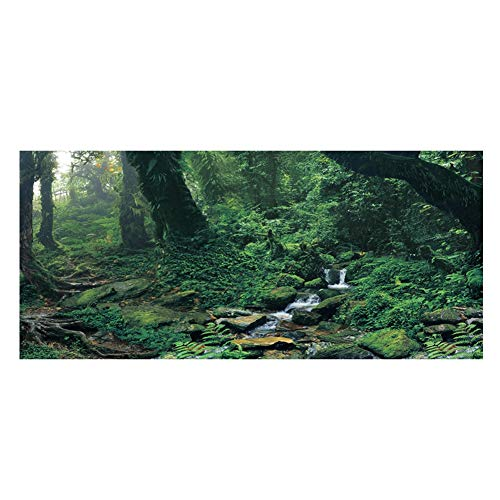 Aquarium Achtergrond Poster, PVC Lijm Riverway Green Woods Aquarium Sticker Decoratie (61 * 41cm)
