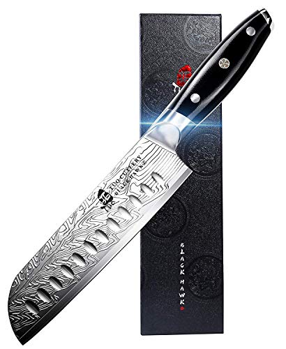 TUO Black Hawk-S Santoku Knife - Japanese Chef Knife, 7 inch High Carbon Stainless Steel Kitchen Knife with G10 Full Tang Handle, Plus Microfiber Cloth - Value Bundle