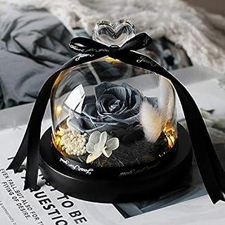 フラスコのガラスドーム母の日中に永遠にバラの花バラはバラバレンタインデーのギフトをプリザーブドフラワー HYFJP (Color : グレー)