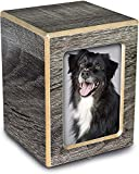 Chateau Urns - Society Collection - Photo Keepsake Cremation Urn - Memorial Box for Ashes - Small (up to 46 lbs) - Coastal Gray Finish
