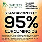 Turmeric Curcumin Highest Potency 95% Curcuminoids 1950mg with BioPerine Black Pepper for Ultra High Absorption, Made in USA, Best Vegan Joint Support by Natures Nutrition - 60 Capsules #2