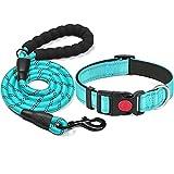 haapaw reflektierendes Hundehalsband gepolstert mit weichem Neopren atmungsaktiv einstellbar Nylon Hundehalsbänder für kleine mittlere große Hunde