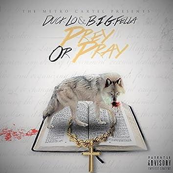 Prey Or Pray