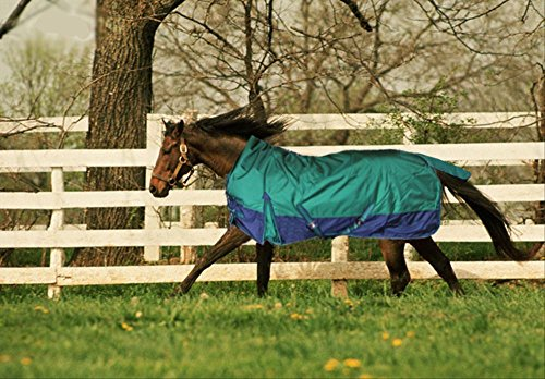 Turnout 1680D Horse Winter Waterproof - Horse Blanket 005 - Size from 69' to 83' (72')