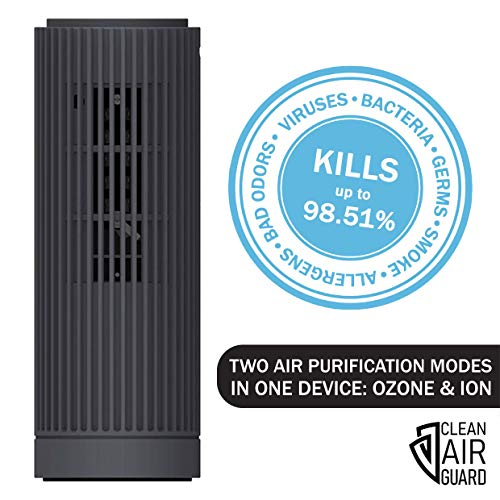 CLEAN AIR GUARD Portable Ozone Generator & Ionizer Mini Air Purifier for Home, Car, Office. Remove Viruses, Bacteria, Germs, Smoke, Dust, Pollen, Pet Dander, Allergens. Quiet Air Cleaner, Dark Gray