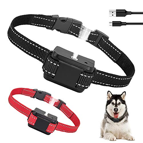 Best Bark Collars for 2 Dogs