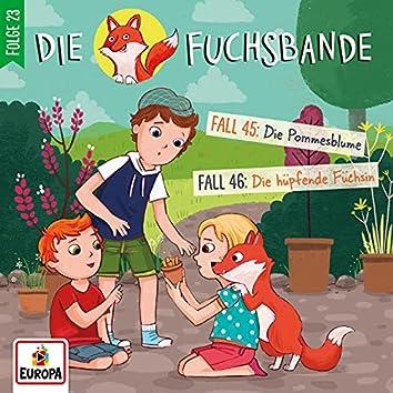 Folge 23: Fall 45: Die Pommesblume/Fall 46: Die hüpfende Füchsin