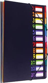 ドキュメントファイル A4 12ポケット 書類 分類 ファイルケース 持ち運び