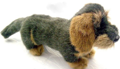 Förster Stofftiere 1506 Rauhaardackel mini 15cm