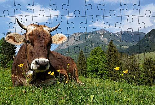 Puzzle-Postkarte Allgäu (Kultur erleben im GMEINER-Verlag)