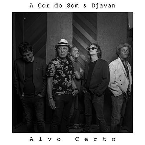 A Cor Do Som & Djavan