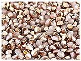 Pinch Bead, 5x3.5mm, 50 piezas, cuentas de vidrio prensado triédrica checas en forma de semillas de trigo sarraceno, White Alabaster/Gold Capri (opal white, half red-gold metallic)