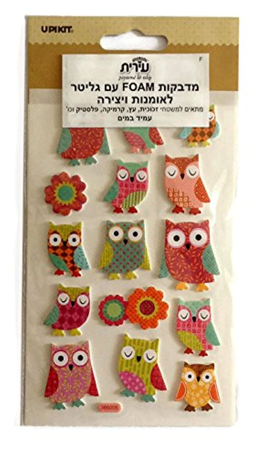 Beautiful Illustrated Owl Stickers for Art Creation and Decoration (Foam Owl)
