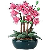 HONIC 01.12 Puppenhaus Miniatur-Fee-Garten Ornament Mini Topfpflanze Blumentopf Puppenhaus-Dekor...