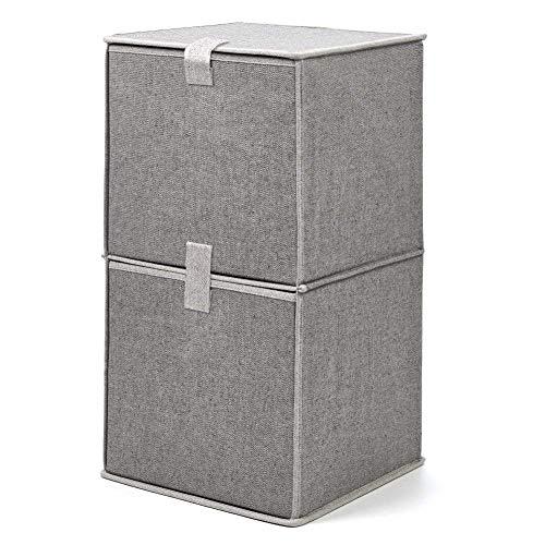 EZOWare Caja de Almacenaje de Tela con 2 Niveles, Estante, Estantería,Organizador de...