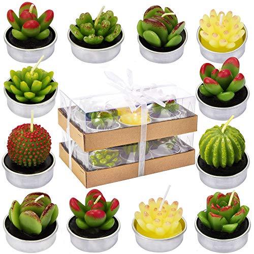 DERDUFT Decorative Succulent Cactus Tealight Candles Kit, Succulent Plant Shape Candle for Decoration, House-Warming Party, 12 Pack