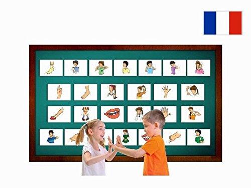 Yo-Yee Flashcards Grandes Cartes Images pour l'Encouragement linguistique - Corps / Parties du Corps - pour l'enseignement de l'français à la garderie, au Jardin d'Enfants et à l'école Primaire
