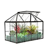 "NA Large Tabletop Greenhouse House Shape Glass Terrarium – Succulent Plant Terrarium Clear Glass Terrarium 9.3""X7.5""X5.3"""