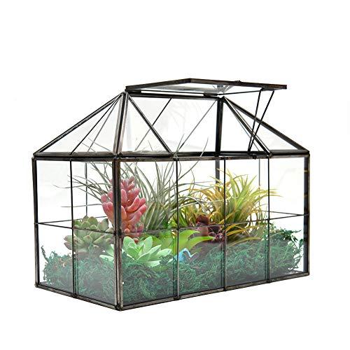 XCMAN großes Tisch-Terrarium aus Glas in Gewächshausform, Sukkulenten-Terrarium, klares Glas, 23,5 x 19 x 13,5 cm