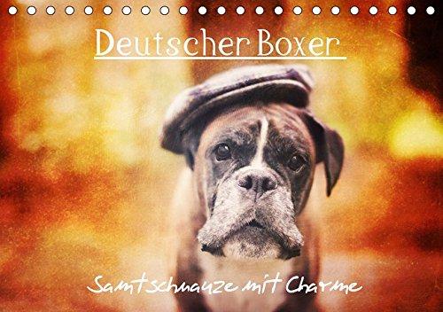 Deutscher Boxer (Tischkalender 2019 DIN A5 quer): Samtschnauze mit Charme (Monatskalender, 14 Seiten ) (CALVENDO Tiere)
