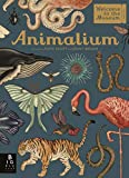 Animalium: (Welcome To The Museum)