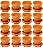 Mini Terra Cotta Pots, 1.9 x 1.5 Inch Flower Clay Pots for Plants with Saucers (16 Pack)