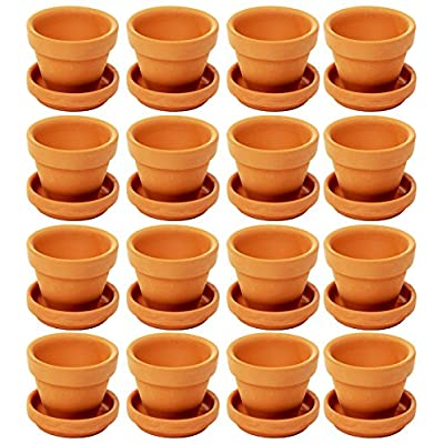 mini terracotta pots with saucers
