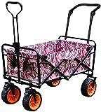 Beach Carts, Handcart Foldable, 80 Kg Load Capacity, Adjustable Rotary Handle, Double Brake